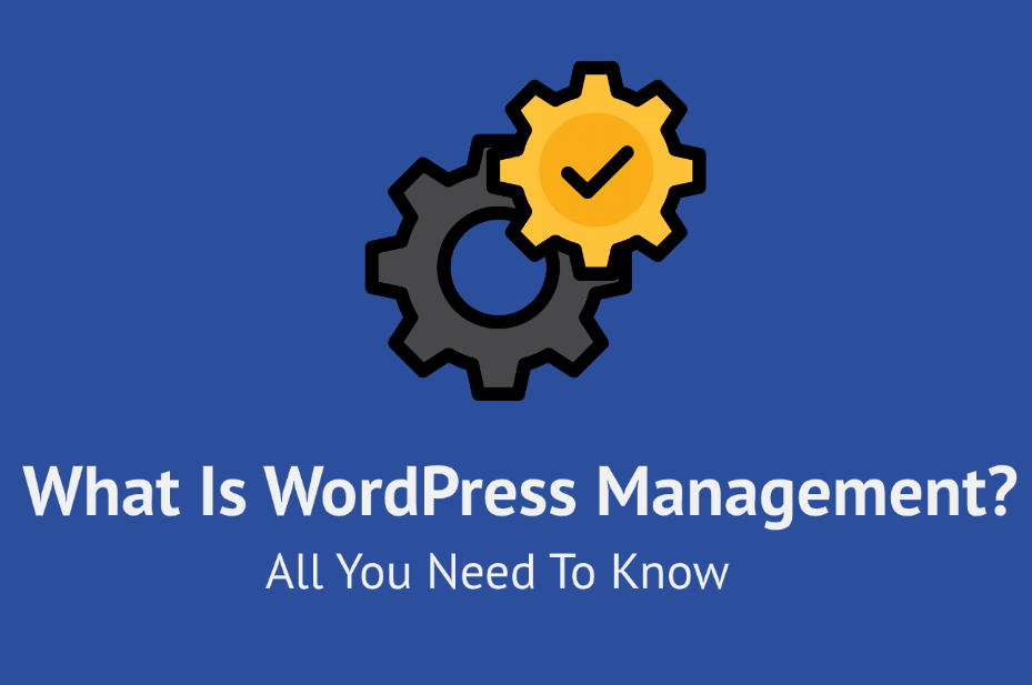 what is WP management?