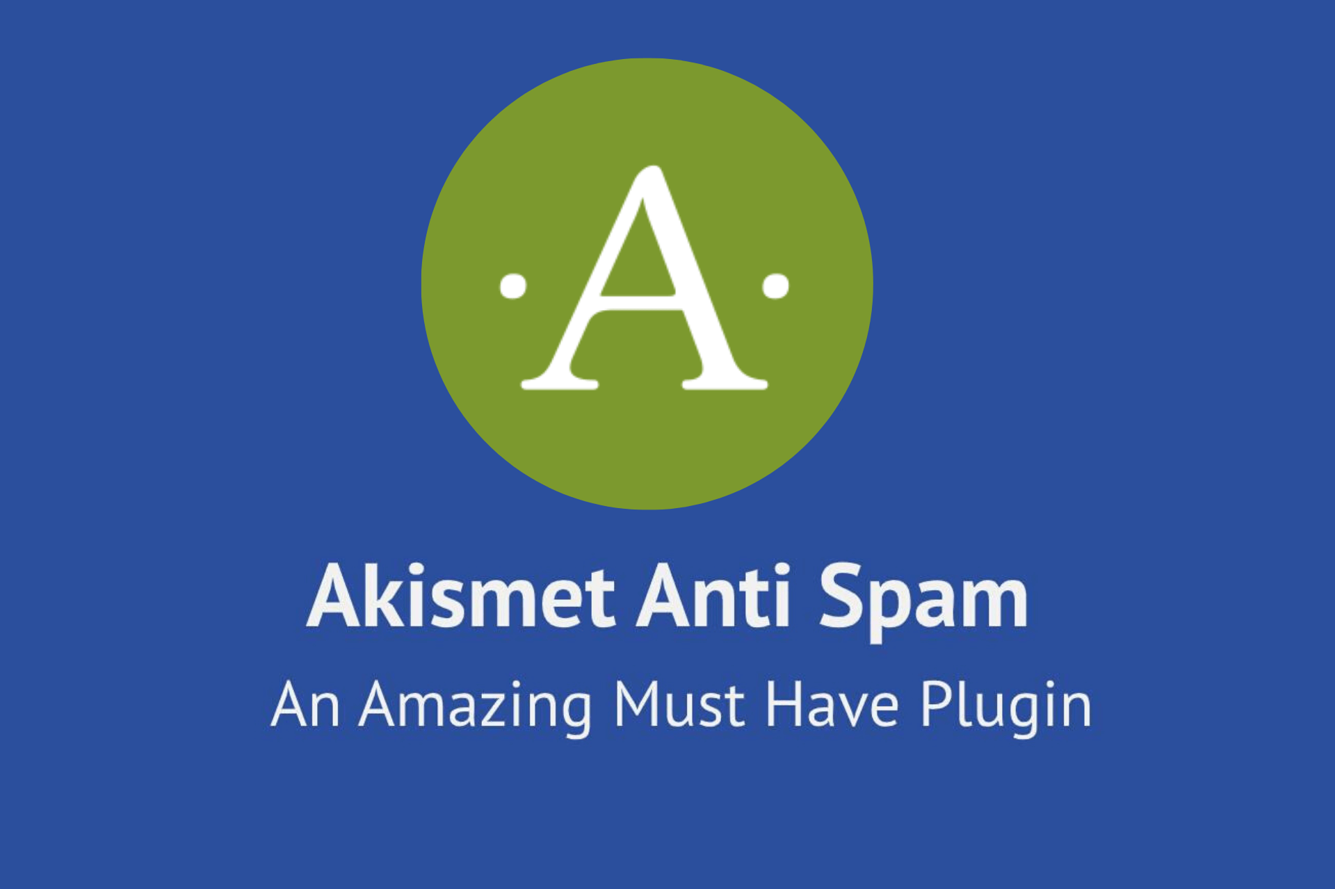 Akismet Anti-Spam-