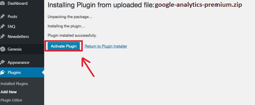 activate Google analytic Plugin
