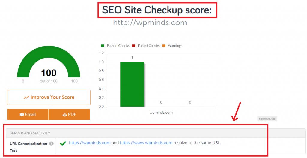 Site SEO Score