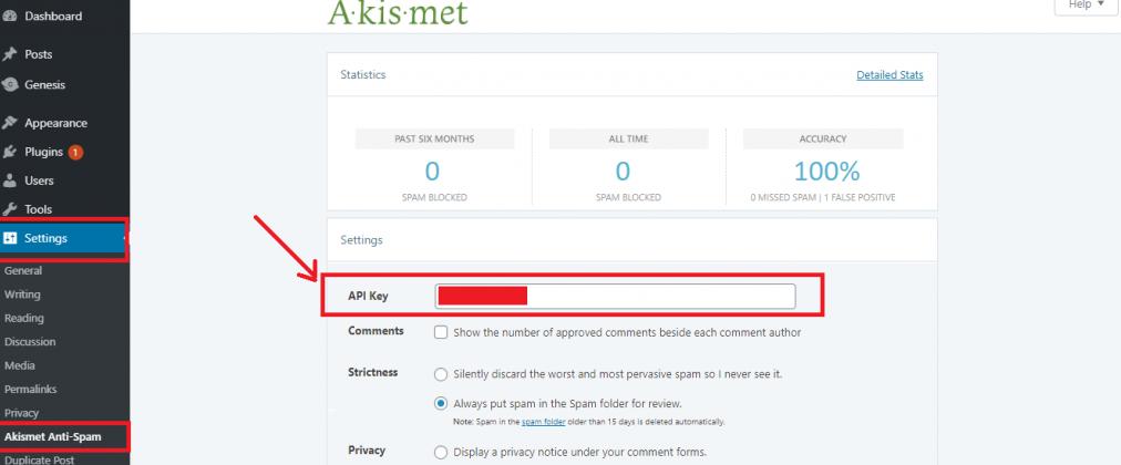 Manually enter an API key to integrate Akismet plugin